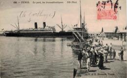 CP TUNIS - Le Port, Les Transatlantiques - Le Carthage - Tunesië