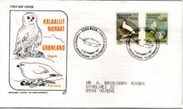 GREENLAND,   FDC,   Owls   /   GROENLAND,    Lettre De Première Jour ,   Hiboux, Chouettes   1987 - Hiboux & Chouettes
