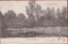 Kalmthout Heide Calmpthout Bad In 't Heidewater Hoelen Cappellen ZELDZAAM 1903 (kreukje) - Kalmthout