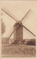 Knokke Knocke Zoute De Molen Van 't Kalf Windmolen Windmill Moulin A Vent 1937 (In Zeer Goede Staat) - Knokke