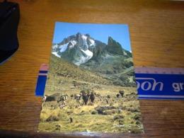 148663 VECCHIA CARTOLINA OLD POSTCARD KENYA ALPINISTI MONTE KENYA 17041 FT - Kenia