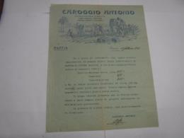 GENOVA  ---  CAROGGIO ANTONIO  -- IMPORTAZIONE FIBRE VEGETALI - Italia