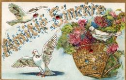Oiseaux..........carte En Relief.... - Other