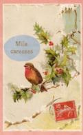 Oiseaux..........carte En Relief.... - Fancy Cards