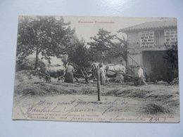CPA 31 HAUTE GARONNE - ENVIRONS DE T0ULOUSE : Dépiquaison Au Rouleau - Toulouse