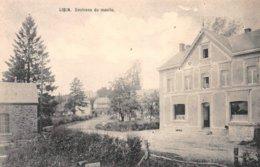 Environs Du Moulin - Libin - Libin