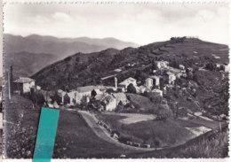 Bly- Italie   Cpsm   PIETRALAVEZZARA - Genova