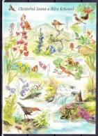 Tchéque République 2005, Carte Postale (CPH 1), Obliteré - Ansichtskarten