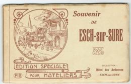Carnet Souvenir De Esch-sur-Sure Edition Speciale Pour Hoteliers PIB.Complet - Cartes Postales
