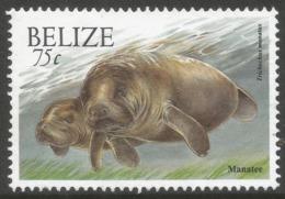 Belize. 2000 Wildlife. 75c MNH. SG 1261 - Belize (1973-...)