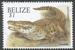 Belize. 2000 Wildlife. $1 MNH. SG 1262 - Belize (1973-...)