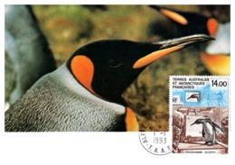Thème Oiseaux - T.A.A.F. - Carte Maximum - Non Classés