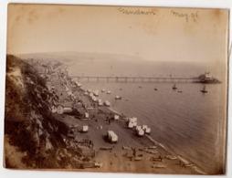 SANDOWN MAY 1896 & GLION-TERRITET SWITZERLAND ~ 3 ANTIQUE PHOTOGRAPHS #89705 - Photographs