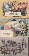 LOT De 7 CPA FANTAISIE Hirondelles Colombes - Baiser AUXONNE AUGY SAINT-SULPICE - Souvenir LIMOGES MAILLY LE CAMP NICE - France
