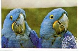 Musée National D'Histoire Naturelle : Ménagerie - Zoo Du Jardin Des Plantes (Paris - France) - Tickets - Vouchers