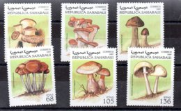 República Saharaui Serie Completa Año 1997 ** SETAS (MUSHROOMS) - Sahara Espagnol