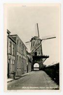 D205 - Wijk Bij Duurstede Molen Van Ruysdael - Molen - Moulin - Mill - Mühle - Wijk Bij Duurstede