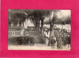 81 Tarn, Albi, La Promenade, Animée, (Poux) - Albi