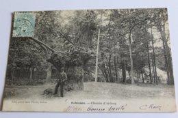 """Robinson - Chemin D""""aulnay - Otros Municipios"""