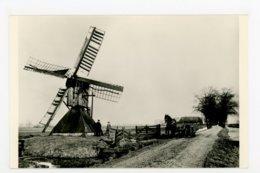 D209 Spinnekop Aan Het Kalverdijkje Gem Leeuwarden - Molen - Moulin - Mill - Mühle - Leeuwarden