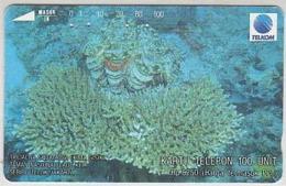 Indonesien - IND 169 UNDER WATER - TRIDACNA SQUAMOSA - 100 Units - Indonesië