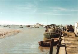 MARANS L Ilienne  Sur L'estuaire Au Port De Pavé     29 (scan Recto Verso)MG2839 - France