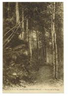 SAINTE-CECILE HERBEUMONT 1928 Touring Club Belgique Sentier De La Vierge PAS COURANTE - Florenville