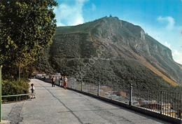 Cartolina Palmi Monte S. Elia Animata - Reggio Calabria