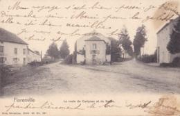 Florenville La Route De Carignan Et De Sedan Nels Série 40 N° 191 Circulée En 1910 - Florenville