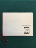 Carte De Vœux Aéronavale Escadrille 4s Algerie - Documents
