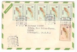22754 - Publicitaire  Pour BIOMARINE - Timor