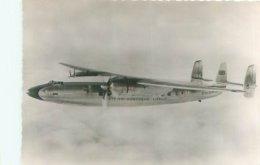 Carte  Photo -  Avion  -   Royal Air Force   ,  Elizabethan  De La B E A                V1016 - Aviones