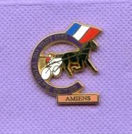 Superbe Pins Course De Chevaux Trot Gnt Amiens 1992 K197 - Badges