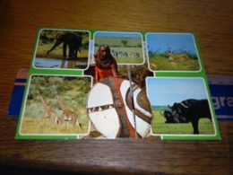 148677 KENYA  WILDLIFE EAST AFRICA  OLD POSTCARD CARTOLINA - Kenia