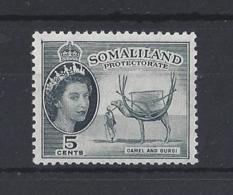 """SOMALILAND...QUEEN ELIZABETH II.(1952-NOW.).."""" 1953 """"....5c....SG137.....MNH. - Somalilandia (Protectorado ...-1959)"""