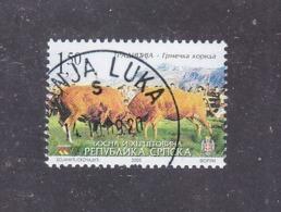 Bosnia And Herzegovina Republika Srpska 2005 Tradition - Corrida Bulls And Cows Used - Farm