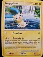 CARTE POKEMON _ NEGAPI _ Niv 24 _ 60 PV _ 2008 - Pokemon