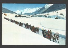Davos - Schlittenfahrt - Blick Auf Rhätikonkette Und Seehorn - GR Grisons