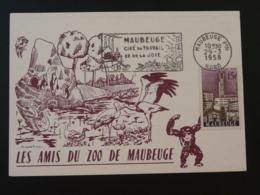 Carte Maximum Card Cygne Cigogne Pingouin Swan Stork Penguin Zoo De Maubeuge 59 Nord 1958 - Cigni