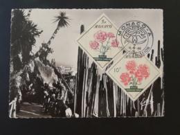 Carte Maximum Card Jardin Exotique Monaco 1959 - Cactusses