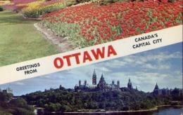 Greetings From - Ottawa - Canada's Capital City - Formato Piccolo Viaggiata Mancante Di Affrancatura – E 13 - Cartoline