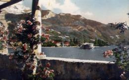Lad D'annecy Talloires - Arrivir Du Bateau France - Formato Piccolo Viaggiata – E 13 - Cartoline