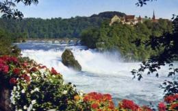 Rheinfall Mit Scloss Laufen - Formato Piccolo Viaggiata Mancante Di Affrancatura – E 13 - Cartoline