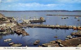 The Harbour Brixham - Devon - Formato Piccolo Non Viaggiata – E 13 - Cartoline