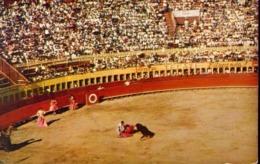 Tijuana - Mexico - Una Tarde De Toros - Bull Fight Scene - Formato Piccolo Viaggiata – E 13 - Cartoline