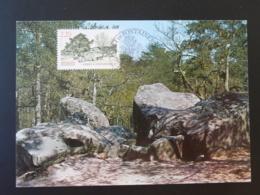 Carte Maximum Card Géologie Rochers De Fontainebleau 77 Seine Et Marne 1989 - Geología