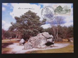 Carte Maximum Card Forêt De Fontainebleau Signée Albuisson 77 Seine Et Marne 1989 - 1980-89