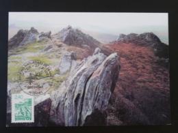 Carte Maximum Card Rochers De Bretagne Rennes 35 Ille Et Villaine 1995 - Geología