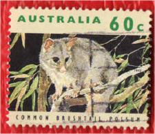 AUSTRALIA - 1992 - Common Brushtail Possum - USATO - 1990-99 Elizabeth II