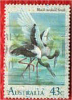 AUSTRALIA - 1991 - WATER BIRDS - USATO - 1990-99 Elizabeth II